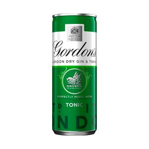 Premix Gordons & Tonic 5.0% 12x250ml